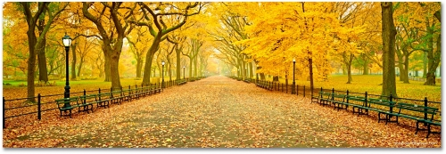 Central Park New York City Panoramic Autumn Fall high-definition HD professional landscape photography
