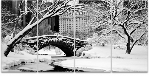 Central Park bridge lake snow