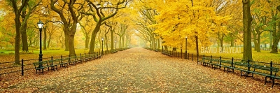 Central Park New York City Literary Walk Autumn Panoramic high-definition HD professional landscape photography