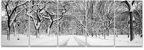 Central Park snow panoramic black and white photography high-definition