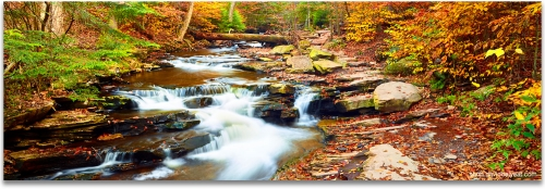 Enchanted Forest New England autumn fall foliage waterfalls high definition HD professional landscape photography