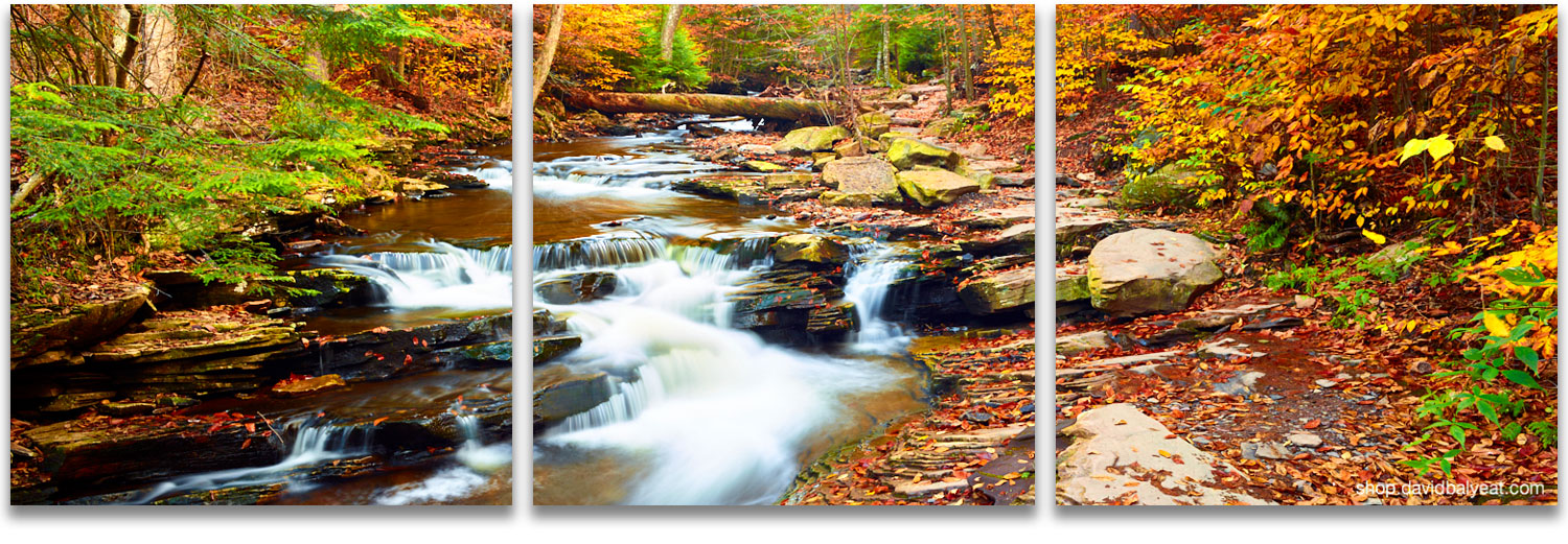 Wonderful Enchanted Forest New England Autumn Fall Foliage Waterfalls High Definition  HD Professional Landscape Photography
