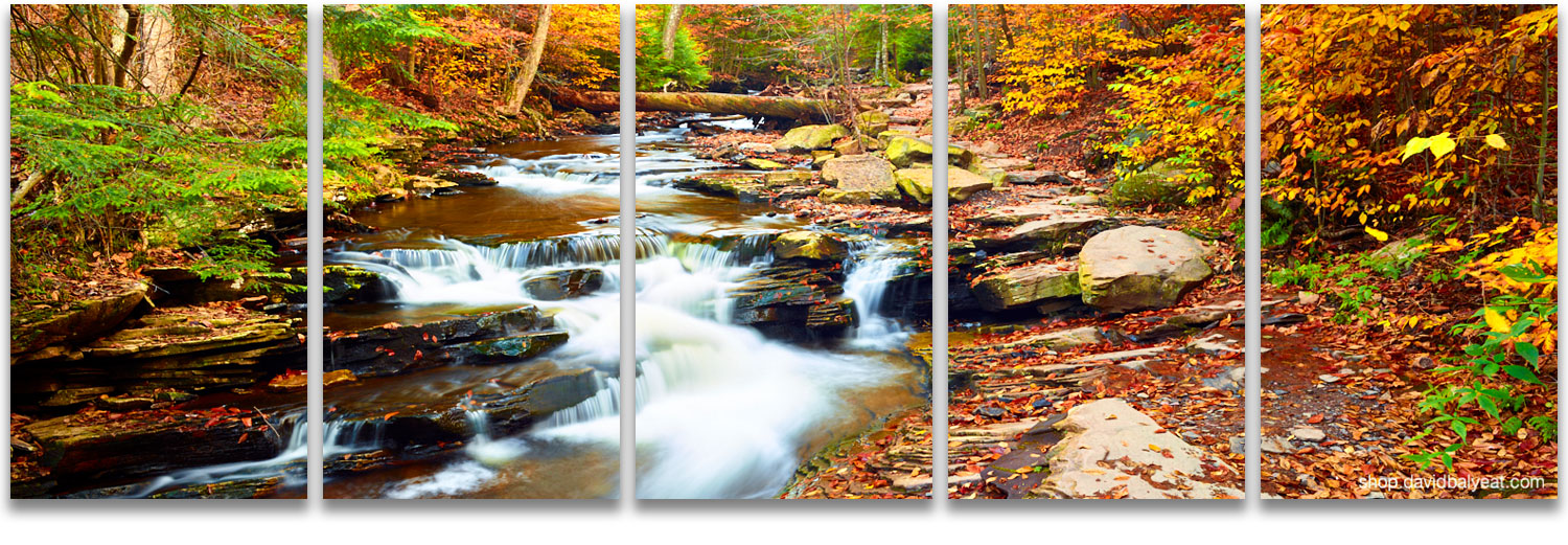 Attractive Enchanted Forest New England Autumn Fall Foliage Waterfalls High Definition  HD Professional Landscape Photography