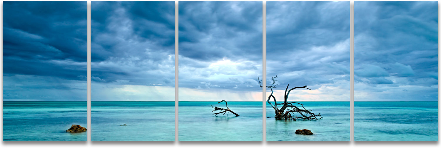 Florida Keys magrove tree stormy skies cerulean blue high definition HD professional landscape photography