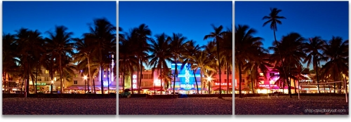 South Beach Palm Trees line Ocean Drive panoramic Miami high-definition HD professional landscape photography