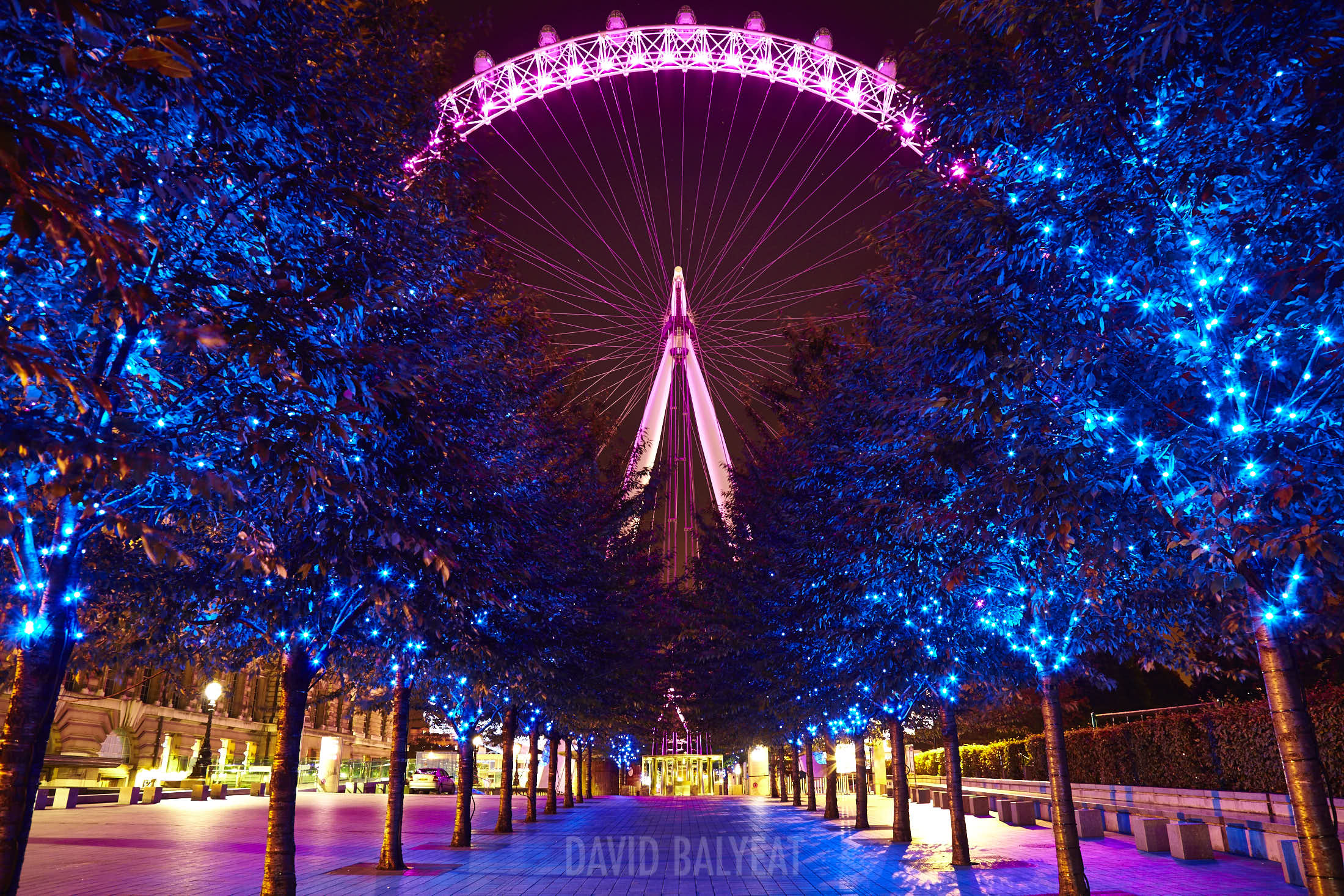 London Eye Jubilee Gardens Promenade cityscape photography