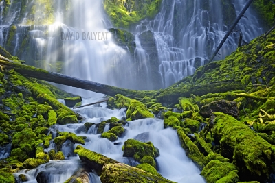 Proxy Falls Oregon high-definition HD professional landscape photography