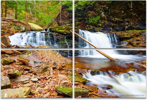 Ricketts Glen Waterfalls 4-panel artwork