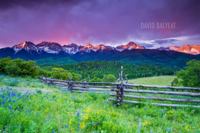 San Juan Mountain sunrise wildflowers high definition HD landscape photography