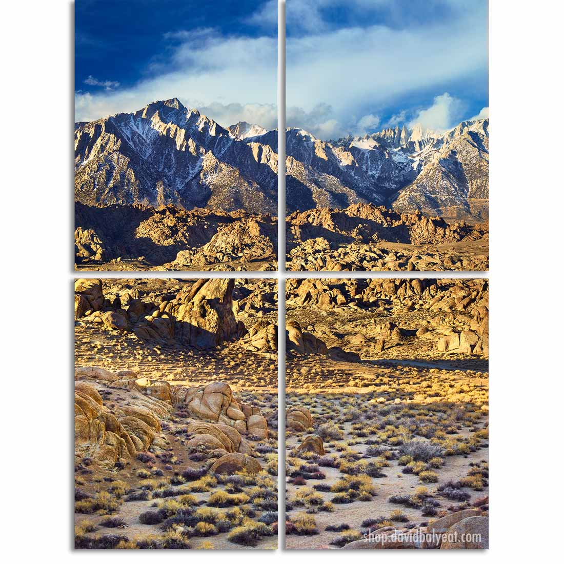 Awareness 4-panel quadriptych wall artwork