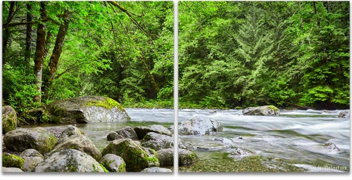 Pacific Northwest River 2 panel artwork