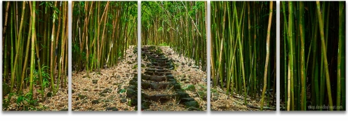 Hana Bamboo forest Haleakala National Park Maui Hawaii 5-panel artwork