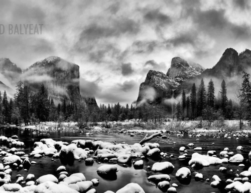 Winter Wonderland – Yosemite National Park